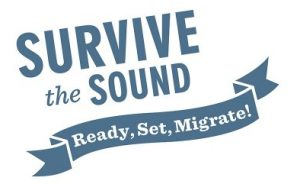 Survive the Sound Logo
