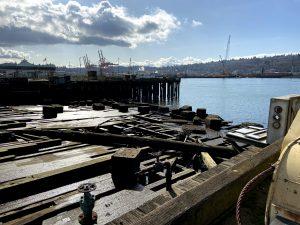 Urban Estuary Restoration