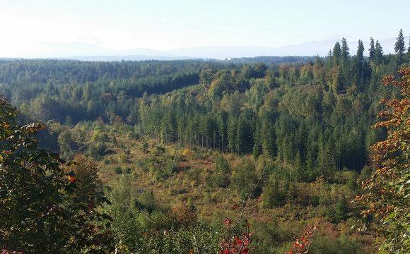 Stossel Creek ridge
