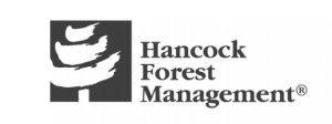 Hancock Forest Management
